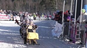 Финские сани: гонки и просто удовольствие
