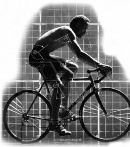 Посадка велосипедиста: правильное положение головы, шеи и туловища